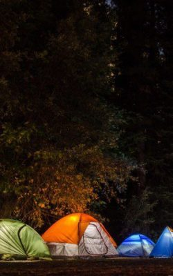six-camping-tents-in-forest-699558-1